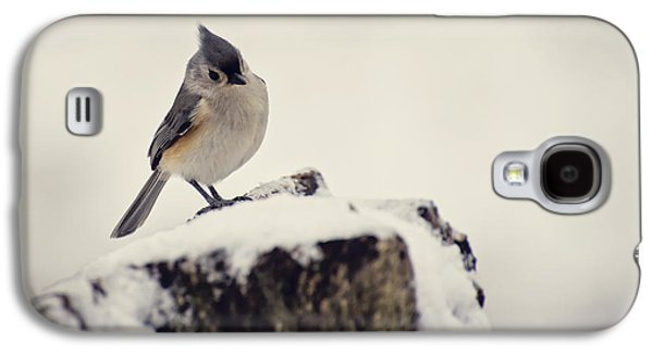 Tufted Titmouse Galaxy S4 Cases - Snow Bird Galaxy S4 Case by Heather Applegate