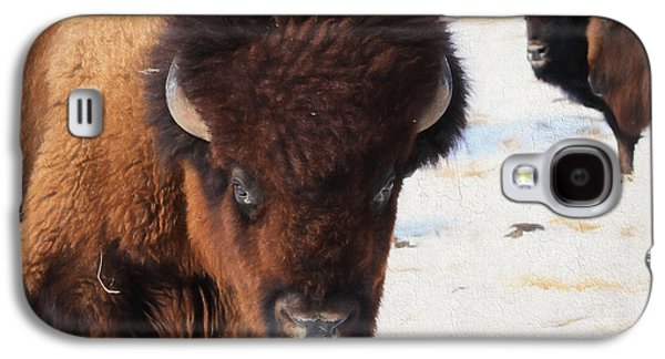 Bison Digital Galaxy S4 Cases - Snow Bison Galaxy S4 Case by Anna Surface