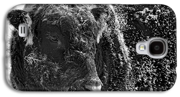 Snow Covered Ice Bull Galaxy S4 Case by Amanda Smith
