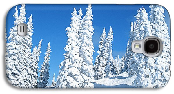 Trees In Snow Galaxy S4 Cases - Snow Covered Trees Colorado Galaxy S4 Case by Jim Steinberg