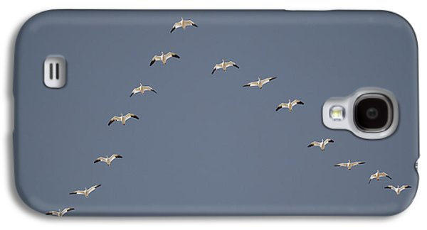 Snow Geese Flying In V Formation Galaxy S4 Case by Jaynes Gallery