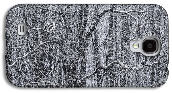 Snow In The Forest Galaxy S4 Case by Diane Diederich
