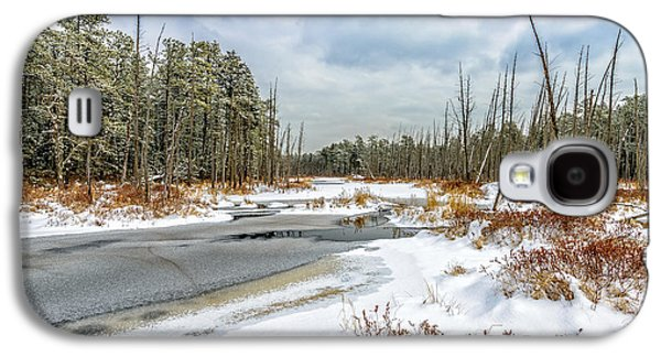 Pine Barrens Galaxy S4 Cases - Snow on Roberts Branch Galaxy S4 Case by Louis Dallara
