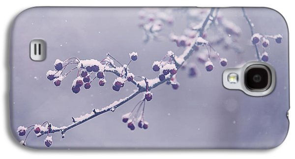 Berries Galaxy S4 Cases - Snowberries Galaxy S4 Case by Carrie Ann Grippo-Pike