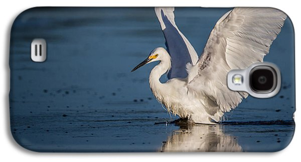 Wetlands Galaxy S4 Cases - Snowy Egret Frolicking in the Water Galaxy S4 Case by Andres Leon
