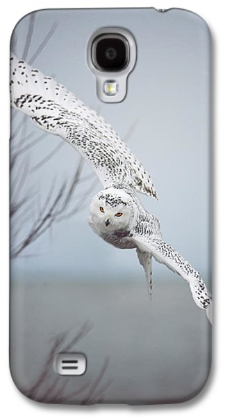 Beach Landscape Photographs Galaxy S4 Cases - Snowy Owl In Flight Galaxy S4 Case by Carrie Ann Grippo-Pike