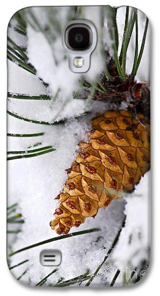 Pine Cones Photographs Galaxy S4 Cases - Snowy pine cone Galaxy S4 Case by Elena Elisseeva