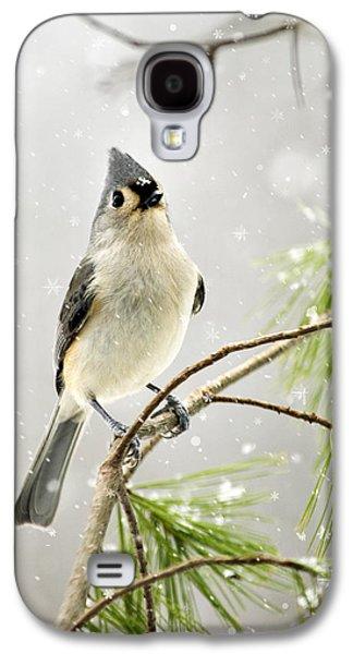 Rollosphotos Digital Galaxy S4 Cases - Snowy Songbird Galaxy S4 Case by Christina Rollo