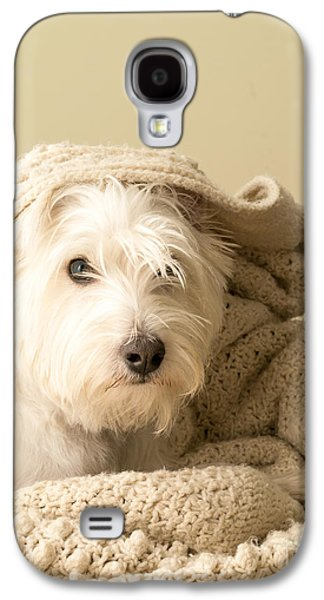 Blanket Galaxy S4 Cases - Snuggle Dog Galaxy S4 Case by Edward Fielding