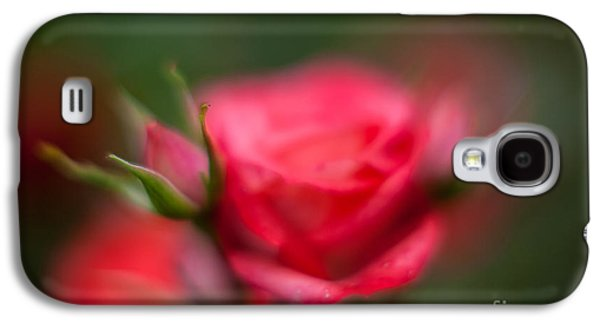 Floribunda Galaxy S4 Cases - Soft and Peaceful Galaxy S4 Case by Mike Reid