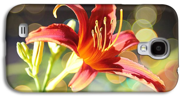 Sunlight On Flowers Galaxy S4 Cases - Soft Daylily Galaxy S4 Case by Carol Groenen