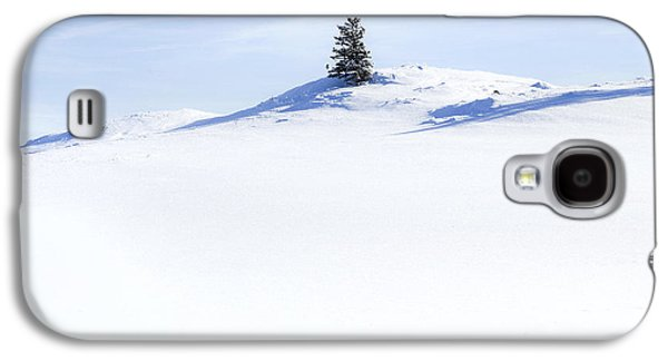 Snow Galaxy S4 Cases - Solitary Galaxy S4 Case by Theresa Tahara