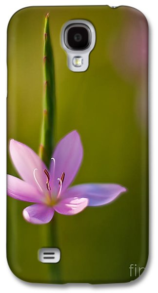 Star Of Bethlehem Galaxy S4 Cases - Solo Crocus Galaxy S4 Case by Mike Reid