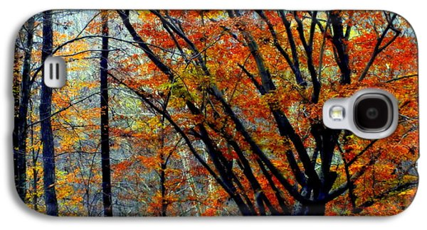 Gatlinburg Galaxy S4 Cases - SONG of AUTUMN Galaxy S4 Case by Karen Wiles
