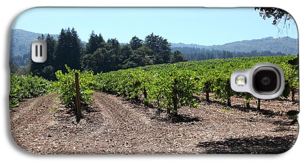 Pastoral Vineyard Photographs Galaxy S4 Cases - Sonoma Vineyards In The Sonoma California Wine Country 5D24511 Galaxy S4 Case by Wingsdomain Art and Photography