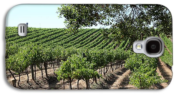 Pastoral Vineyard Photographs Galaxy S4 Cases - Sonoma Vineyards In The Sonoma California Wine Country 5D24594 Galaxy S4 Case by Wingsdomain Art and Photography