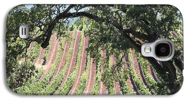 Pastoral Vineyard Photographs Galaxy S4 Cases - Sonoma Vineyards In The Sonoma California Wine Country 5D24619 square Galaxy S4 Case by Wingsdomain Art and Photography
