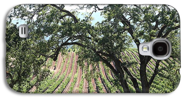 Pastoral Vineyards Galaxy S4 Cases - Sonoma Vineyards In The Sonoma California Wine Country 5D24619 Galaxy S4 Case by Wingsdomain Art and Photography