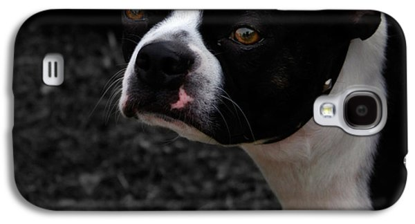 Dogs Digital Galaxy S4 Cases - Soul Beautiful  Galaxy S4 Case by Steven  Digman