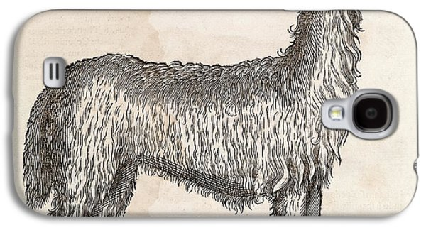 South American Camelid Galaxy S4 Case by Middle Temple Library