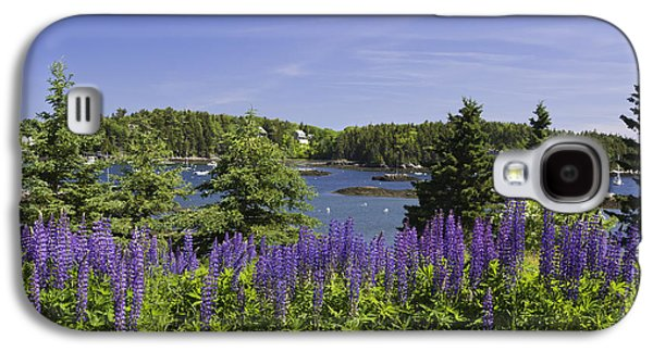Coastal Maine Galaxy S4 Cases - South Bristol and Lupine Flowers on the coast of Maine Galaxy S4 Case by Keith Webber Jr