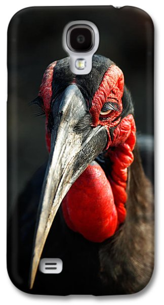 Southern Ground Hornbill Portrait Front View Galaxy S4 Case by Johan Swanepoel