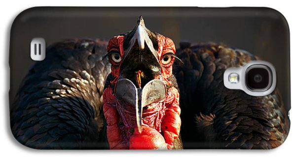 Eat Galaxy S4 Cases - Southern Ground Hornbill swallowing a seed Galaxy S4 Case by Johan Swanepoel