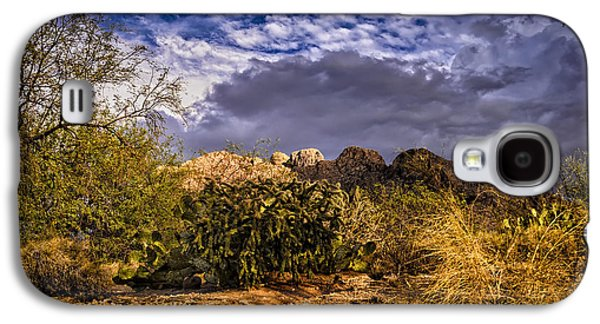 Landscape Acrylic Prints Galaxy S4 Cases - Southwest Salad No.2 Galaxy S4 Case by Mark Myhaver