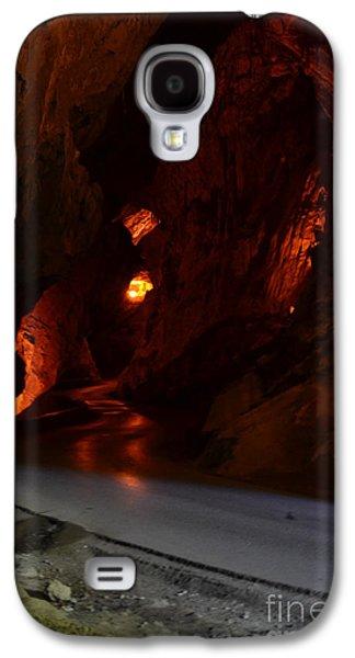 Bat Pyrography Galaxy S4 Cases -  La Cuevona Galaxy S4 Case by Miryam  UrZa