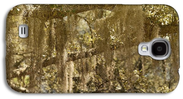 Epiphyte Galaxy S4 Cases - Spanish Moss on Live Oaks Galaxy S4 Case by Christine Till