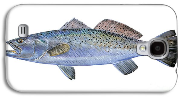 Sharks Paintings Galaxy S4 Cases - Speckled Trout Galaxy S4 Case by Carey Chen