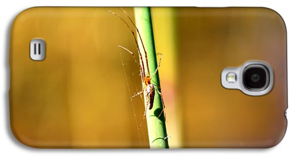 Metallica Galaxy S4 Cases - Spider in the reeds  Galaxy S4 Case by Toppart Sweden