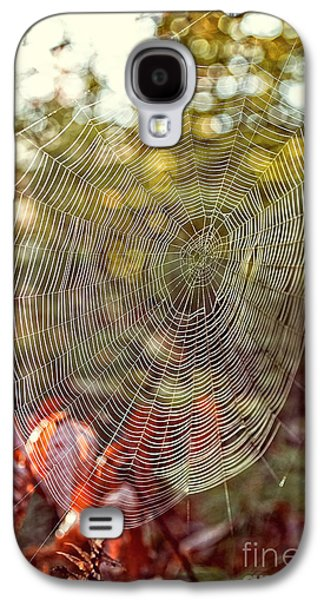 Spider Web Galaxy S4 Case by Edward Fielding