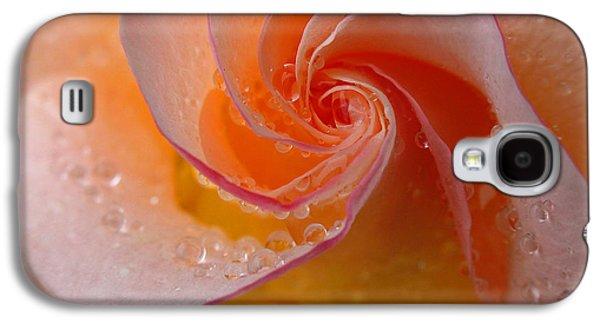 Floribunda Galaxy S4 Cases - Spiral Rose Galaxy S4 Case by Juergen Roth