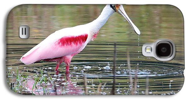 Spoonbill In The Pond Galaxy S4 Case by Carol Groenen