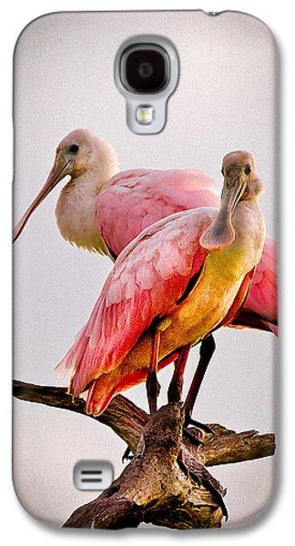 Waterscape Galaxy S4 Cases - Spoonbills II Galaxy S4 Case by Debra and Dave Vanderlaan