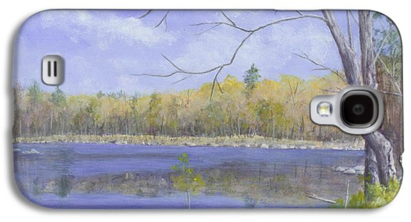 Nature Center Pond Paintings Galaxy S4 Cases - Spring Day Galaxy S4 Case by Nan McCarthy