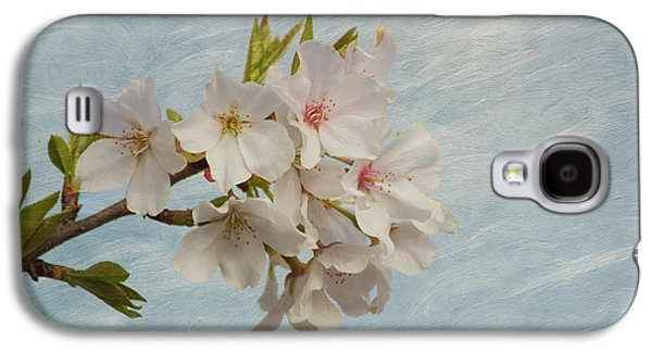 Cherry Blossoms Galaxy S4 Cases - Spring Delight Galaxy S4 Case by Kim Hojnacki