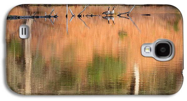 Reflections Galaxy S4 Cases - Spring Geese Galaxy S4 Case by Bill  Wakeley