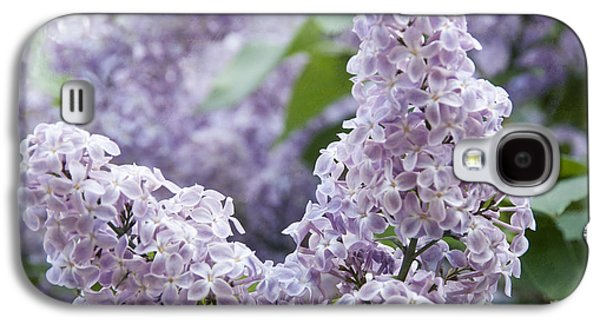 Blooming Galaxy S4 Cases - Spring Lilacs in Bloom Galaxy S4 Case by Juli Scalzi