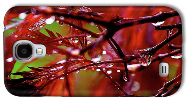 Nature Abstract Galaxy S4 Cases - Spring Rain Galaxy S4 Case by Rona Black