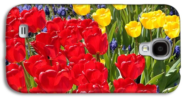 Blue Grapes Galaxy S4 Cases - Spring Sunshine Galaxy S4 Case by Carol Groenen