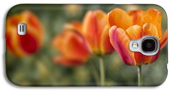 Interior Still Life Photographs Galaxy S4 Cases - Spring Tulips Galaxy S4 Case by Adam Romanowicz