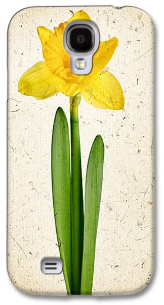 Parchment Galaxy S4 Cases - Spring yellow daffodil Galaxy S4 Case by Elena Elisseeva