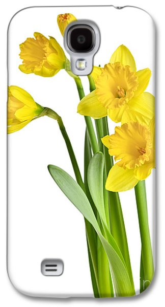 Green Galaxy S4 Cases - Spring yellow daffodils Galaxy S4 Case by Elena Elisseeva