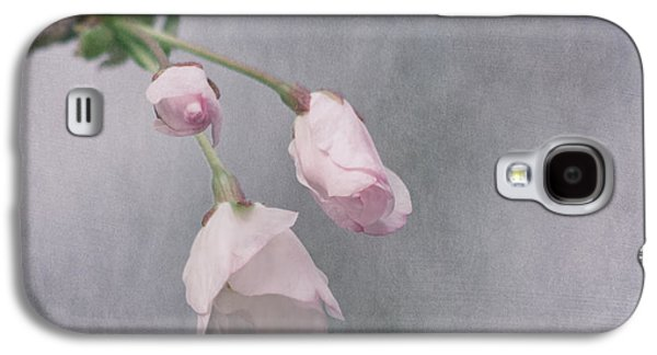 Cherry Blossoms Galaxy S4 Cases - Springs Promise Galaxy S4 Case by Kim Hojnacki