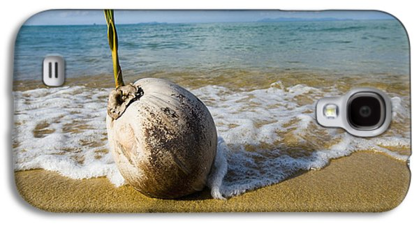 China Beach Galaxy S4 Cases - Sprouting Coconut Washed Up On Beach Galaxy S4 Case by Naki Kouyioumtzis