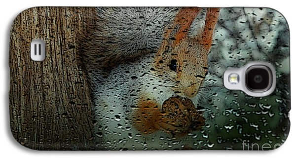 Squirrel Galaxy S4 Case by Marvin Blaine