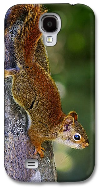 Photo Manipulation Galaxy S4 Cases - Squirrel Scout Galaxy S4 Case by Bill Caldwell -        ABeautifulSky Photography