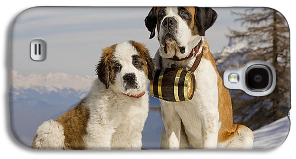 Dog In Landscape Galaxy S4 Cases - St Bernard And Puppy Galaxy S4 Case by Jean-Michel Labat